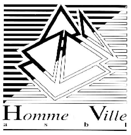 Homme & Ville asbl